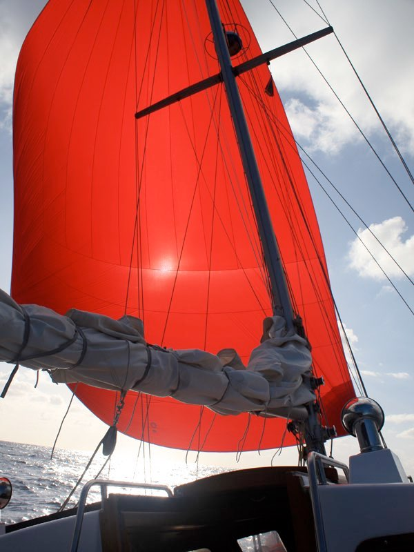 Sailing the Gennaker